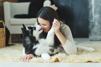 Glücklich mit Hund