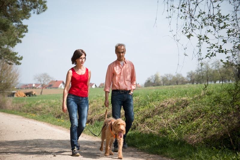 Hund führen