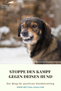 Stoppe den Kampf gegen deinen Hund